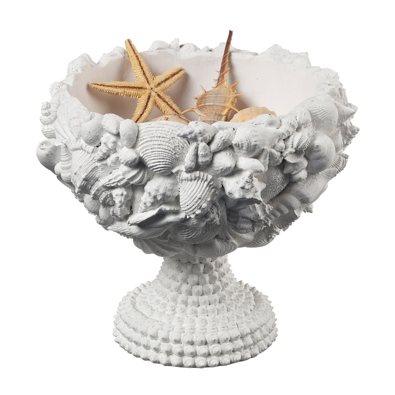 SEASHELL BOWL - CHALk