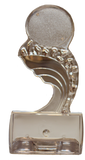 Sculpted Ice Mylar Award