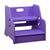 Step Up 2-in-1 Step Stool