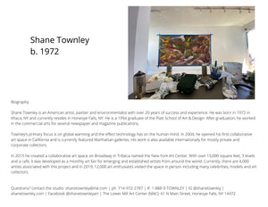 "Shane Townley Contemporary New York Artist ""The Light""  60""X48""  Oil on Canvas"