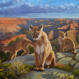 Cats on the Rim by Wayne Weberbauer, Oil on Canvas