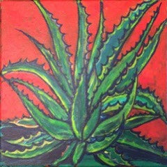 """Agave II "" by Debra Robertson, Oil on Canvas Panel"