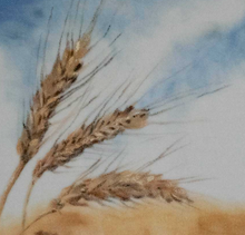 """Wheat Ears In the Wind"" By Claudia Luethi, Oil on Velvet"