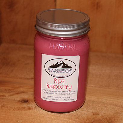 Ripe Raspberry Soy Candle