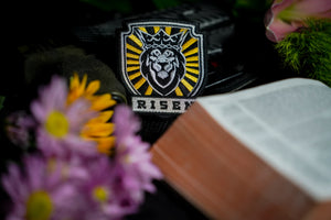 Risen: Crown Special Edition Patch