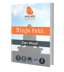 Ninja Path Zen Mind Guide