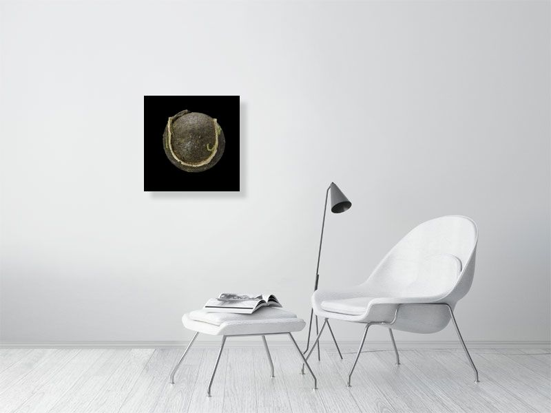 Brown tennis ball on black background print on living room wall