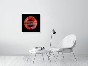 Open image in slideshow, Cricket ball on black background print on living room wall