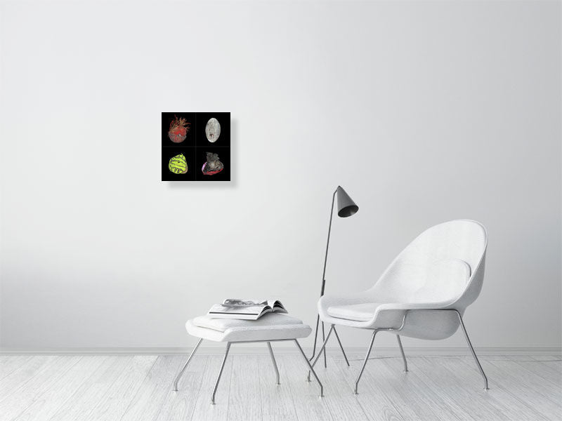 Collage of four sports balls on black background print on living room wall