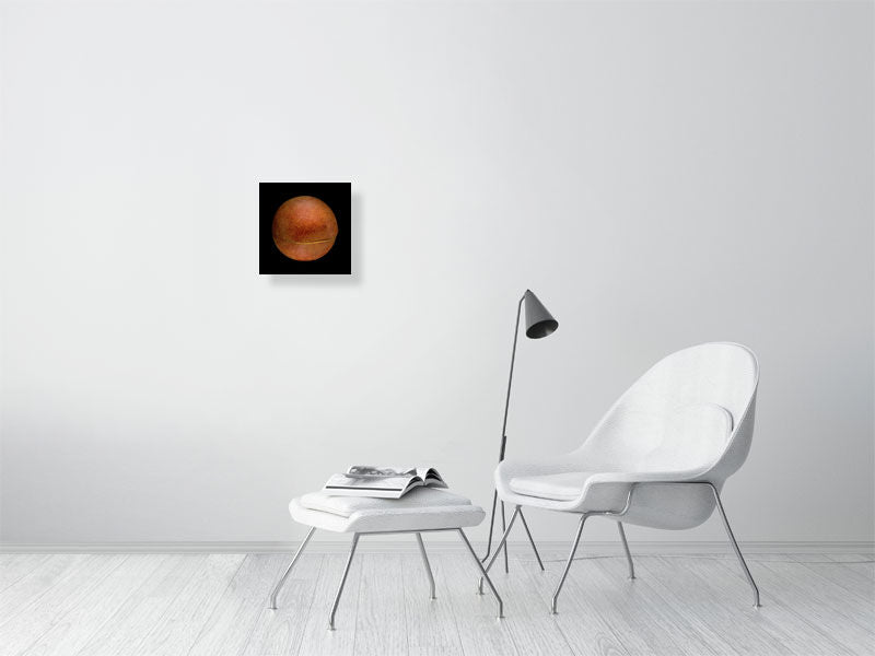Brown medicine ball on black background print on living room wall