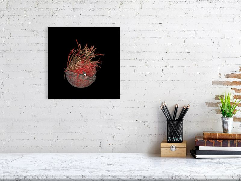 Unravelled cricket ball on black background print above desk