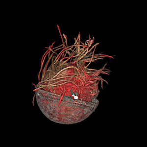 Open image in slideshow, Unravelled cricket ball on black background print