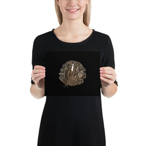 Open image in slideshow, Woman holding brown football on black background poster