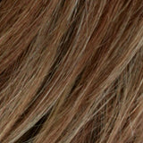 RM8/26H - Golden Brown with Golden Blonde Highlights