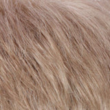 R14/24 - Dark Blonde / Pale Golden Blonde Blend