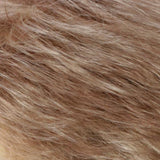 R14/26H - Dark Blonde with Golden Blonde Highlights