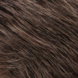 R14/8C - Golden Brown with Dark Blonde Chunky Highlights