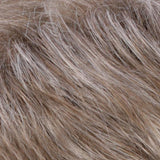 R17/101 - Ash Brown / Platinum Blonde Blend