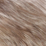 R18/22 - Ash Blonde / Light Ash Blonde Blend