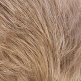 R2418BT - Golden Blonde Blended & Tipped with Ash Blonde