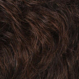 R36F - Chestnut Brown / Medium Auburn Frost