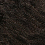 R4/6 - Dark Brown / Chestnut Brown Blend