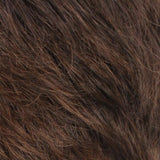 R6/27H - Chestnut Brown with Light Auburn Highlights