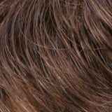 R9/12 - Light Golden Brown / Light Brown Blend