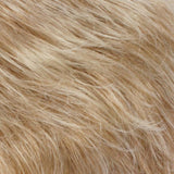 RT613/27 - Light Auburn Tipped with Pale Blonde
