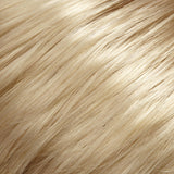 22 - Lt Ash Blonde  - Salon Color Levels: 11A