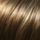 10H24B - Lt Brown w/ 20% Lt Gold Blonde Highlights - Salon Color Levels: 6N/9G