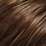 8H14 - Med Brown  w/ 20% Med Natural Blonde Highlights - Salon Color Levels: 5N/9N