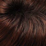 131T4S4 - Shaded Berry :: Dk Brown & Med Red Blend w/ Med Red Tips, Shaded w/ Dk Brown - Salon Color Levels: 6R/3N