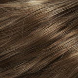 FS10/16 - Walnut Syrup :: Lt Brown w/ Natural Blonde Bold Highlights  - Salon Color Levels: 6N/10N