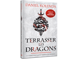 Terrasser les Dragons (Slaying Dragons - French)