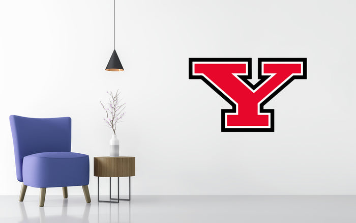 Youngstown State Penguins Basketball NCAA Wall decal Stickerz