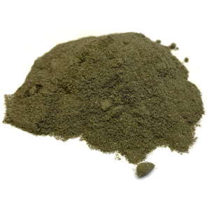 Squaw Vine Herb Powder