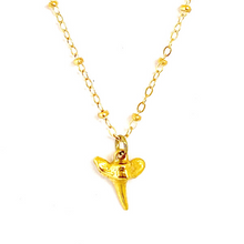 GOLD SHARK TOOTH WITH CABLE CHAIN