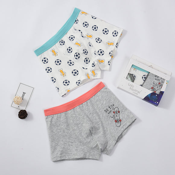 2-pack boxer shorts (Boys) Skateboard