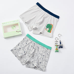 2-pack boxer shorts (Boys) Dino