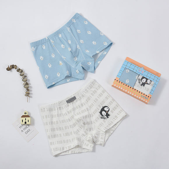 2-pack boxer shorts (Boys) Bear