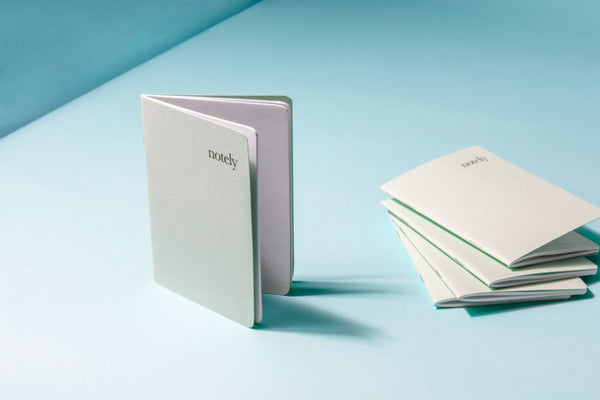 Spearmint & Grey A6 Notebooks (set of 2) - by Notely