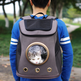 Bag to carry wonderful pets