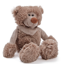 Brown Teddy Bear (20cmST)