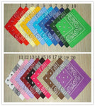 100% Cotton Paisley Bandanas Double Sided (20 Count)