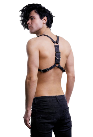 Double Buckle Adjustable Harness