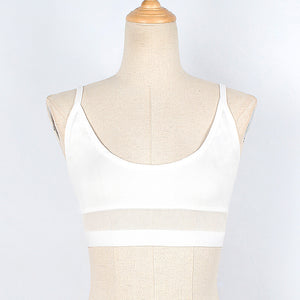 Sleeveless Sheer Line Crop Top (Black & White)