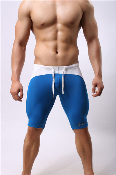 Men's Mesh Tights (Multiple Colors)