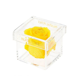 Yellow Eternity Rose - Petit Bisou
