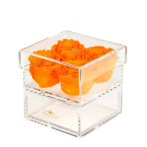 Hermes Orange Eternity Roses - Acrylic Box cinq